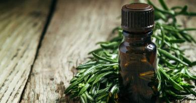 A penész és a makacs baktériumok ellen is hatásos – Így használd a teafaolajat takarításkor