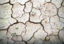 Katasztrófa Németországban – bajt okoz a Rajna kiszáradása