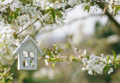 Párban egy mini házban! Így lehet békében együtt élni néhány négyzetméteren