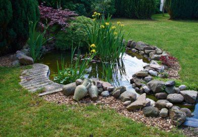 Hangulatos házak szép kerttel, kerti tóval