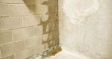 Mit lehet tenni, ha vizesedik a fal? Mutatjuk, mikor kell feltétlenül szakembert hívni