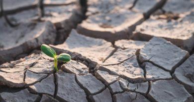 Most, hogy már Északnyugat-Európa is ismeri az aszályt, fontosab lesz a vízvédelem