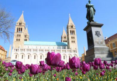 Remek albérletekkel vár Pécs!