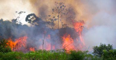 A Sarkkörtől Brazíliáig lángokban áll a Föld