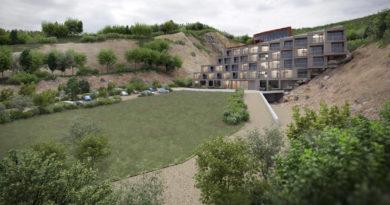 Szociális tűzifa lesz a luxusszálloda építése miatt kivágott fákból