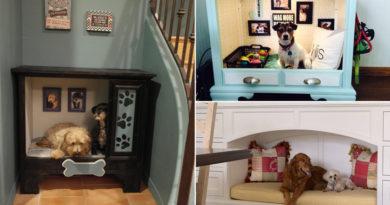 Imádni való beépített kutyaágyak, amiket te is elkészíthetsz: mutatjuk a legjobbakat