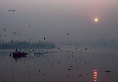 Velencei-tó – a járvány átírta az ingatlanpiacot